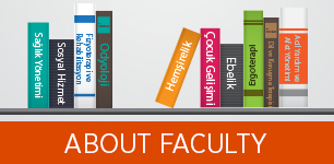 About Faculty